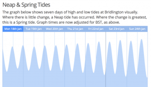 A graph showing neap and spring tides